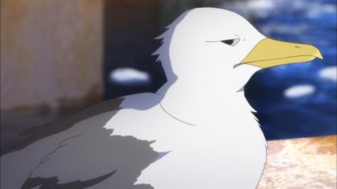 Nagi no Asukara Seagull Shifty Eyes Angry Stare