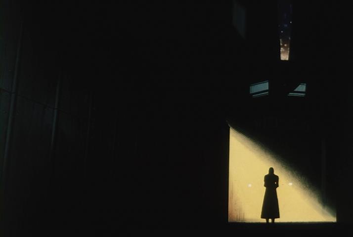 Twilight of the Dark Master Shihaisha no Tasogare Tsunami Shijo Back Alley Shadow Light Ray