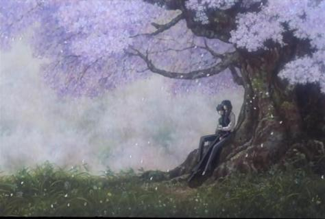 X The Movie X1999 Kamui Shiro Mother Hug Embrace Under Sakura Cherry Blossom Tree Field