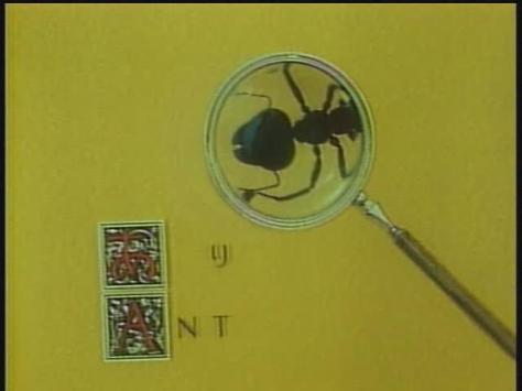 Koji Yamamura Japanese-English Pictionary Ant Magnifying Glass