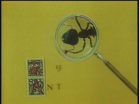 Koji Yamamura Japanese-English Pictionary Ant Magnifying Glass